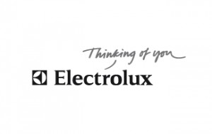 Electrolux AB's share price up, in preliminary negotiations to acquire the appliance unit of General  Electric Co.