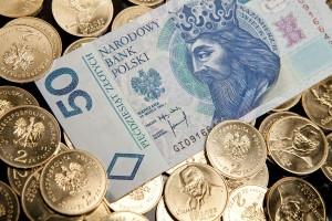 Forex zloty dollar