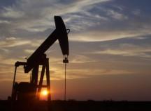WTI crude near two-week low