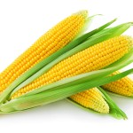 Grain futures mixed, corn at 35-month low