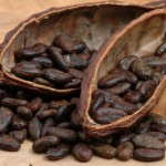 Cocoa extends gains on delayed harvest; sugar advanced