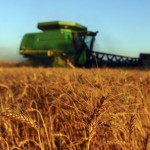 Grains trading outlook: wheat, corn and soybeans futures slide after Monday rally