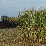 Grains trading outlook: corn, wheat futures reverse some gains, soybeans up