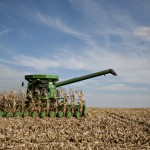 Grains trading outlook: corn futures recover some losses, wheat, soybeans further down